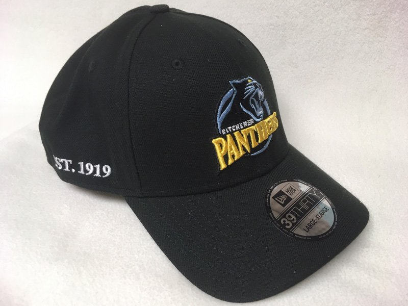 Panthers Flex 2020 Hat