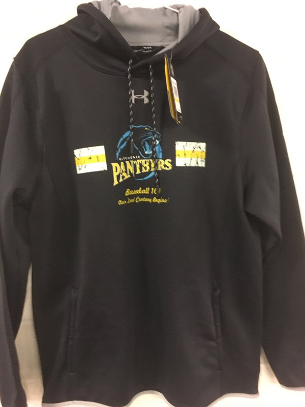 Panthers Dry Fit Game Hoodie